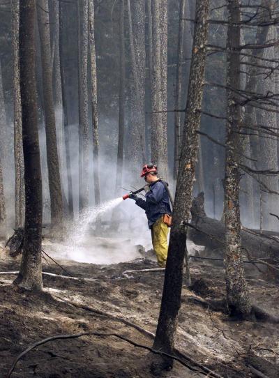 The Alberta effect - www firefightingincanada com